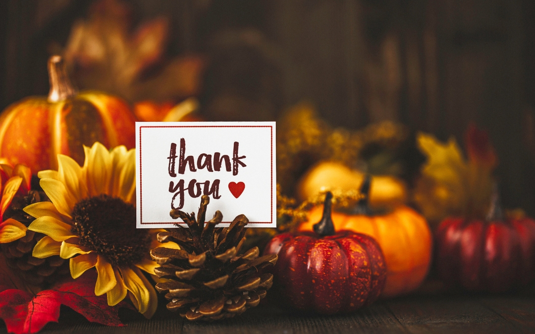 Thanksgiving Wishes . . . and a Few Small Gifts!